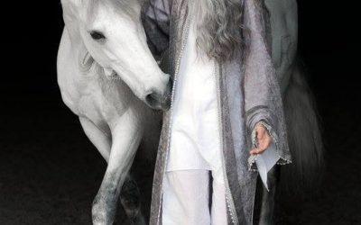 Jó szelet, vágtató hátas lovat !