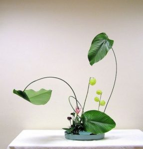 ikebana-paddington-sydney-sherman-opulent-foundation elemér