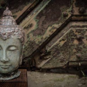 Budha fej, fa talpazaton