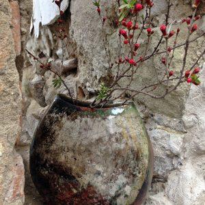 Kavics váza, nyiladozó tavaszi ággal